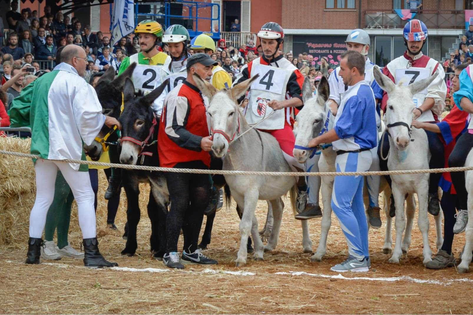 Fiera Internazionale del Tartufo Bianco d'Alba donkey race