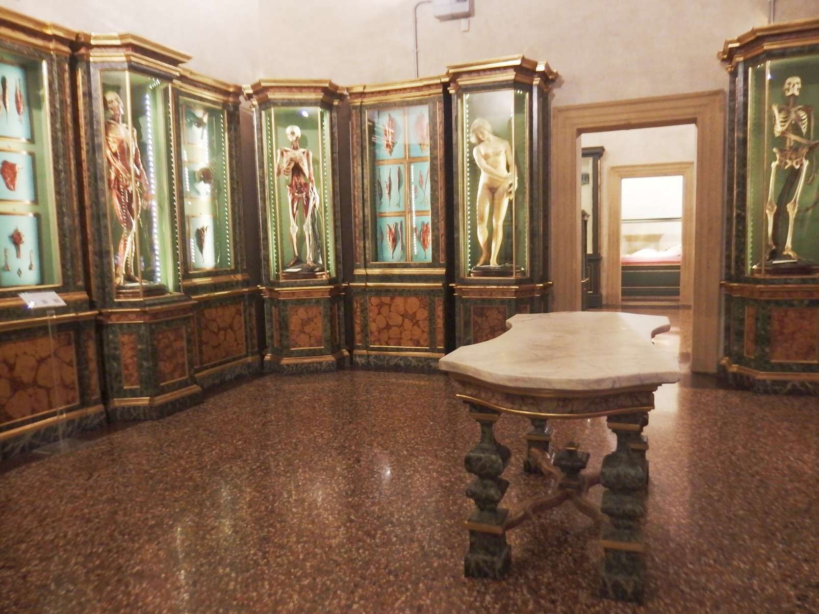 Museo di Palazzo Poggi - Bologna - anatomical wax models