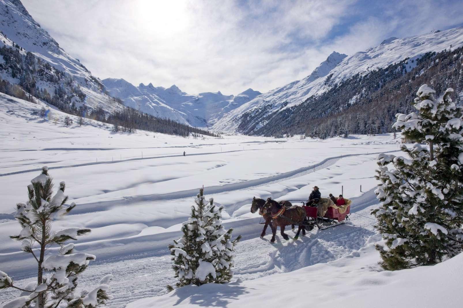 Perfect weekend sleigh